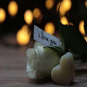 80+ I Love You Shayari in Hindi for Girlfriend {Love Shayari}